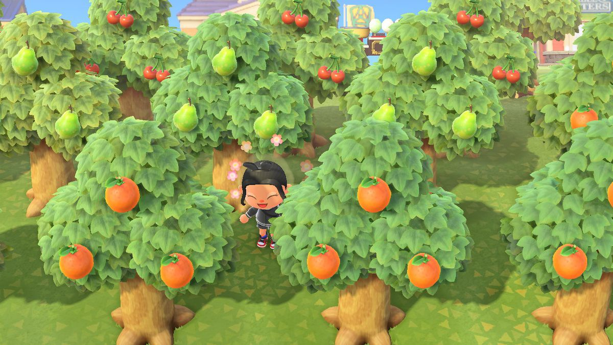 A grove of trees in Animal Crossing New Horizons