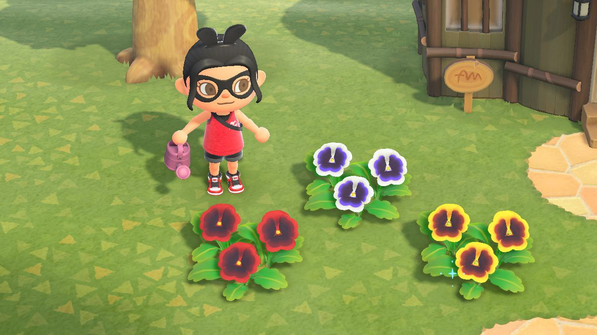 An Animal Crossing character stands around various colored pansies